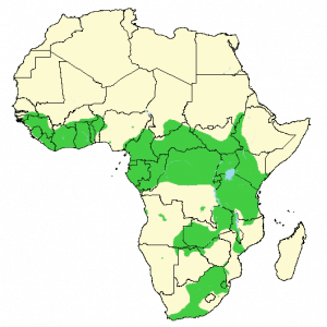 African Buffalo - Syncerus caffer - Distribution map