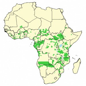 African Elephant - Loxodonta africana - Distribution map