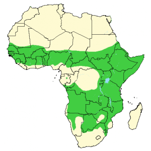 Spotted Hyena - Crocuta crocuta - Distribution Map
