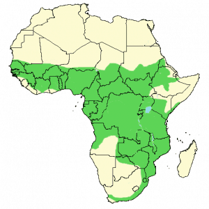 Long-Crested Eagle - Lophaetus occipitalis - Distribution Map
