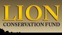 Lion Conservation Fund 1 - Lion