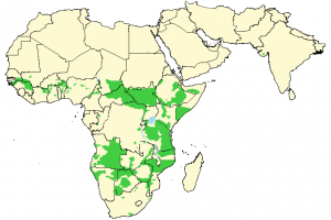 Lion - Panthera leo - Distribution map
