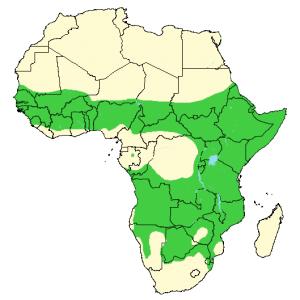 Spotted Hyena - Crocuta crocuta - Distribution Map