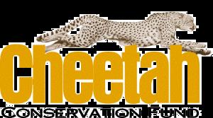cheetah conservation fund 300x167 - Gepard