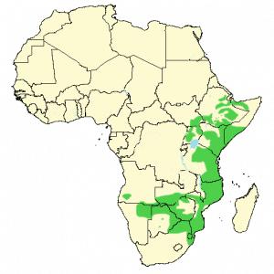 Crested Francolin - Dendroperdix sephaena - Distribution map