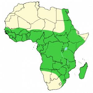 Nile Crocodile - Crocodylus niloticus - Distribution Map
