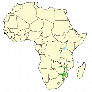 Nyala - Nyala angasii - Distribution map