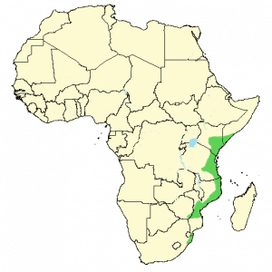 Southern Banded Snake Eagle - Circaetus fasciolatus - Distribution Map