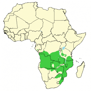 Southern Reedbuck - Redunca arundinum - Distribution map