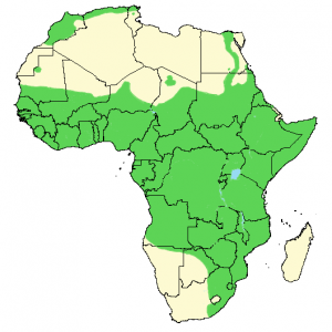Common Bulbul - Pycnonotus barbatus - Distribution Map