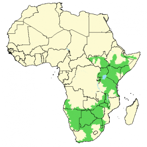 Leopard Tortoise - Stigmochelys pardalis - Distribution Map